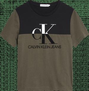 Calvin Klein Tshirt IB0IB00527  Grape Leaf