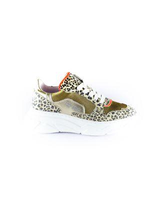 Hip Sneaker H1266-96CO-DC  Panter