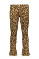 FLO pants F908-5613  flare pants