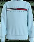 Tommy Hilfiger Trui KB0KB06568C flag rib