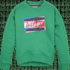 Tommy Hilfiger Trui KG0KG05220 green